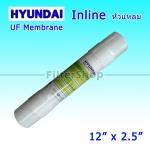 ไส้กรอง UF Membrane HYUNDAI 12 นิ้ว x 2.5 นิ้ว (หัวเสียบ)