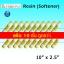 ไส้กรองน้ำ Softener Resin 10 นิ้ว x 2.5 นิ้ว Clean Pure แพ็ค 10 ชิ้น
